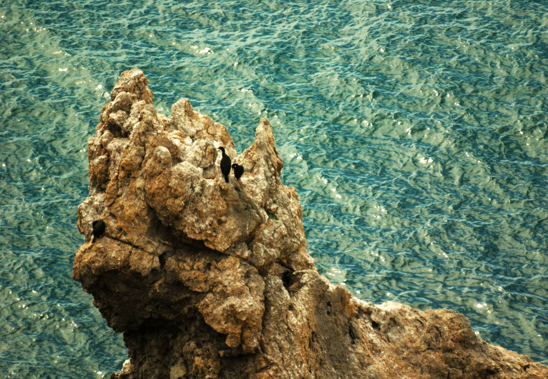 море крн